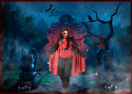 Анимация Праздник хеллоуин, вампир стоит в старом парке замка, в небе летают мыши, на дереве сидит ворон