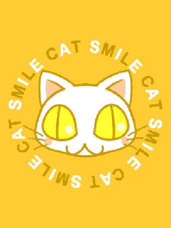 Анимация Cat smile / улыбка кошки, кот улыбается на желтом фоне в круге из движущихся букв