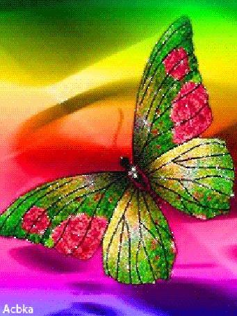 Анимация Красивая разноцветная бабочка на ярком цветном фоне, Acbka