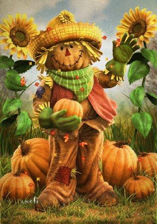 Анимация Веселое пугало стоит среди подсолнухов и тыкв под падающими листьями