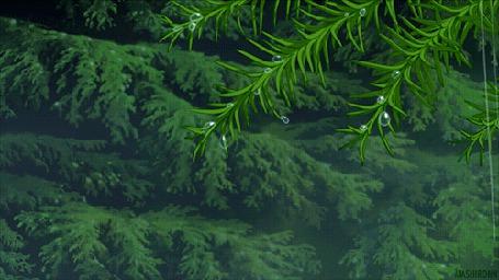 Анимация Капли воды падают с веток дерева, аниме Рони, дочь разбойника — /Sanzoku no Musume Ronja (2014)/ (© Krista Zarubin), добавлено: 17.11.2015 11:52