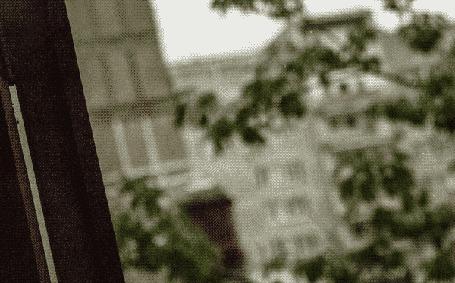 Анимация За окном колышутся ветви деревьев на размытом фоне и падают капли дождя (© zmeiy), добавлено: 19.11.2015 20:59