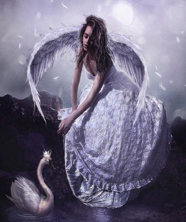Анимация Ангельская девушка с лебедем
