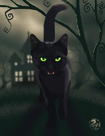 Анимация Кот меняется с изменением природы, когда появляется молния, by Nojjesz
