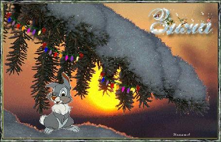 Анимация Кролик под новогодней веткой ели, (зима), автор Наташа