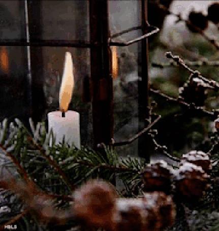 Анимация Горящая свеча у елки, ву HILS (© zmeiy), добавлено: 16.12.2015 13:16