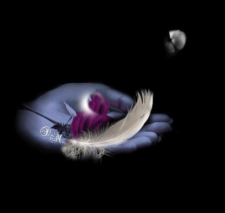 Анимация Бабочка садится на белое перышко, лежащее вместе с розой на ладошке