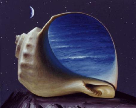 Анимация Раковина с морским прибоем внутри, лежит под звездным небом лунной ночью, исходник Sabin Balasa