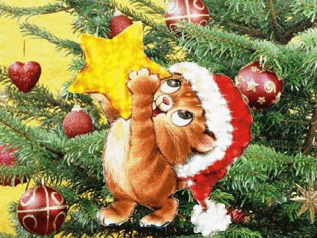 Анимация Котенок вешает звезду на елку (© JeremeVoods), добавлено: 21.12.2015 03:45