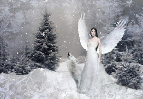 Анимация Ангел стоит рядом с белым волком в лесу под падающим снегом