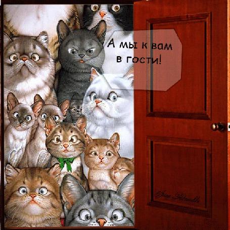 Анимация Коты заглядывают в открытую дверь (А мы к вам в гости! Чем это так вкусно пахнет? Угостите?)