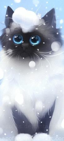 Анимация Котенок под падающим снегом (© zmeiy), добавлено: 28.12.2015 10:16