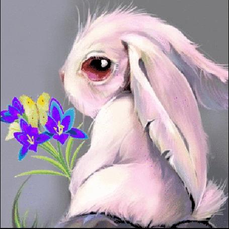 Анимация Зайчик держит цветы с бабочкой