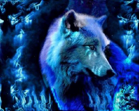 Анимация Голубой волк в туманной дымке ночного леса прислушивается к каждому шороху