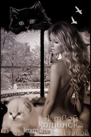 Анимация Красивая девушка с обнаженной спиной у окна, на фоне котенок (Я твой котенок котенок. я твой. котенок)