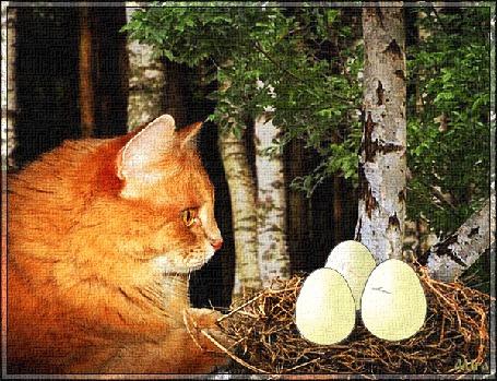 Анимация Кот смотрит, как из яиц в гнезде вылупляются котята