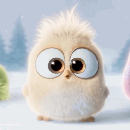 Анимация Пушистый птенец из рождественского ролика Angry Birds рассматривает снег