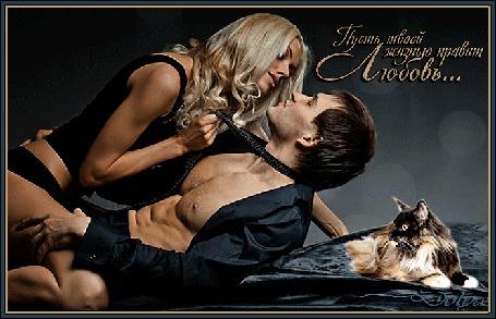 Анимация Девушка держит мужчину за галстук, рядом, на кровати, лежит кот, (Пусть вашей жизнью правит любовь) (© ДОЛЬКА), добавлено: 06.02.2016 14:25