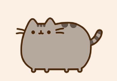 Анимация Pusheen The Cat / Пушен Кэт машет хвостом