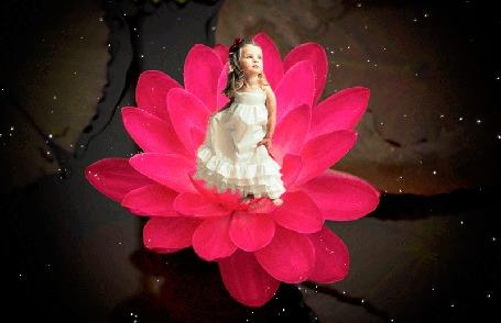 Анимация Девочка в белом платье стоит на цветке, который растет в воде, (Дюймовочка), автор pasiqut