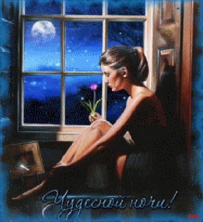 Анимация Девушка сидит с цветком в руке у окна на фоне ночного неба с луной и падающими звездами (Чудесной ночи!)
