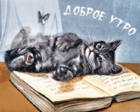 Анимация Серый кот лежит на раскрытой книге, моргая глазами, на столе, на фоне качающейся занавески и летающей бабочки, (Доброе утро!)