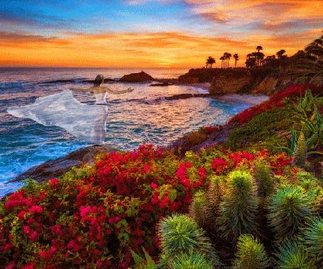 Анимация Девушка в белом платье стоит на берегу моря и любуется прекрасным закатом