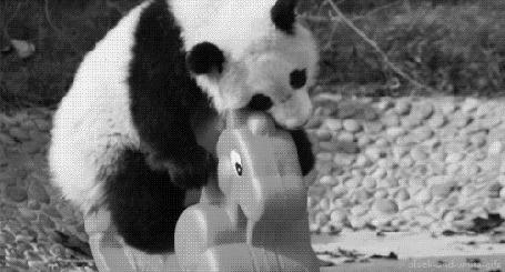 Анимация Панда катается на деревянной лошадки, но не удерживается и падает