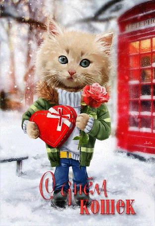 Анимация Котик с розой и конфетами возле телефонной будки / С днем кошек