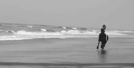 Анимация Девушка скачет на лошади вдоль моря