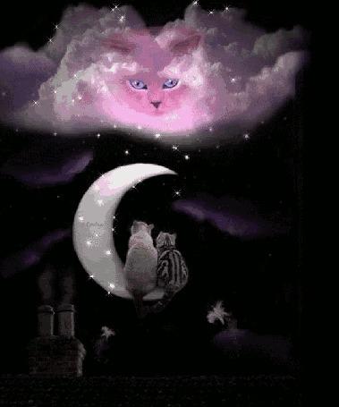 Анимация Коты сидят на луне и смотрят на облако с котом