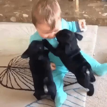 Анимация Малыш играет с двумя черными щенками (© Anatol), добавлено: 19.03.2016 00:22