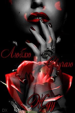 Анимация Девушка приложила палец руки к красным губам на фоне падающих липестков и красной розы по середине (Люблю, скучаю, жду), by DX