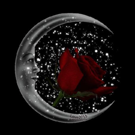 Анимация Бордовая роза на месяце