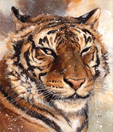 Анимация Тигр под падающим снегом, by kenket (© chucha), добавлено: 24.03.2016 00:14