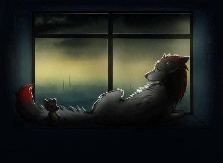 Анимация Грустная фурри волчица смотрит на дождь за окном
