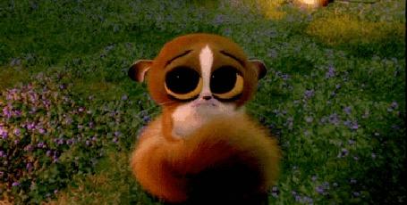 Анимация Маленький лемур по имени Морт / Mort делает печальные глазки, мультфильм Мадагаскар / Madagascar (© Radieschen), добавлено: 25.03.2016 15:24