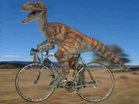 Анимация Динозавр несется вперед на велосипеде