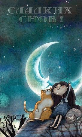 Анимация Девочка сидит на крыше с двумя котами (Сладких снов!) (© PolinaPolina), добавлено: 01.04.2016 07:28