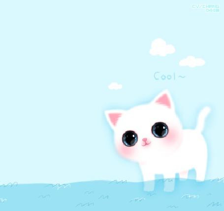 Анимация Белый котенок купается в море (cool), корейские котята by chango448