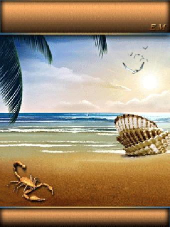 Анимация Скорпион на морском пляже около ракушек