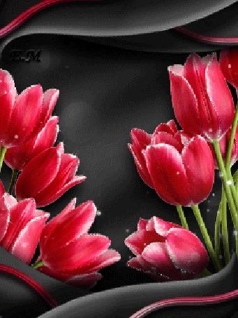 Анимация Розовые тюльпаны в блестках