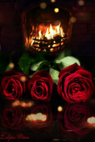 Анимация Розы у горящего камина (Eclipse moon)