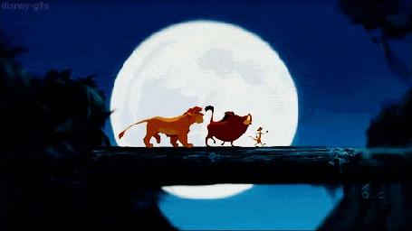 Анимация Взросление Симбы, который идет по мосту вместе с Тимоном и Пумбой, из мультфильма Король Лев / The Lion King