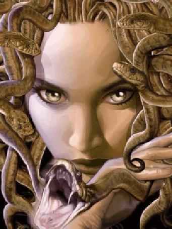 Анимация Голова Медузы Горгоны в окружении змей (© Anatol), добавлено: 13.04.2016 16:41