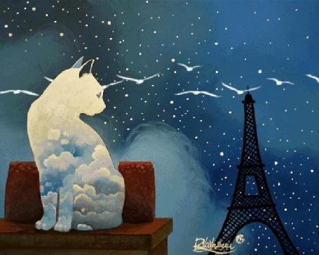 Анимация Облачный кот смотрит на птиц, парящих в небе, by Raphael Vavasseur