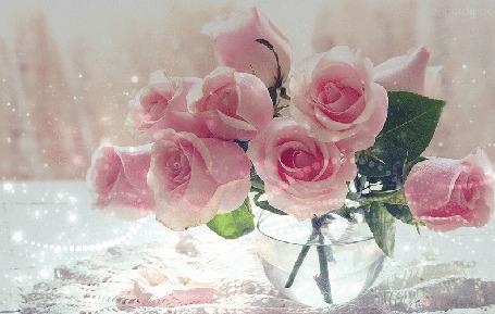 Анимация Нежные розовые розы в вазе