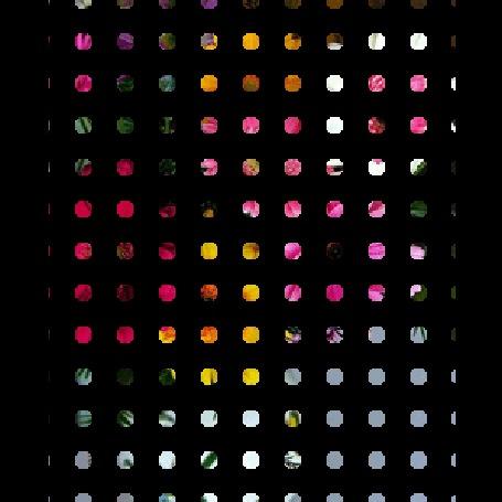 Анимация Разноцветные герберы с листьями (© elenaiks), добавлено: 23.04.2016 08:01