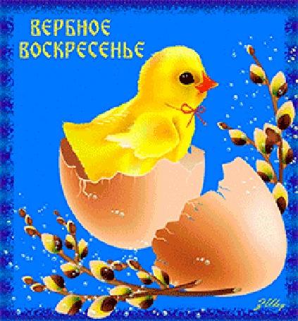 Анимация Желтый цыпленок вылупился из яйца, рядом веточки вербы (Вербное воскресенье)