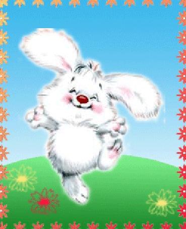 Анимация Белый кролик бежит по лугу
